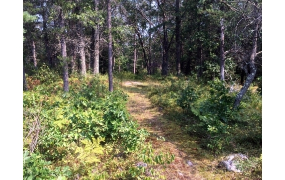 High Falls Marinette County Land for Sale
